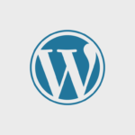 WordPress Programming - WordPress Developer Frankfurt - WordPress API